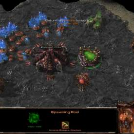 Игра StarCraft 2 Heart of the Swarm торрент на русском